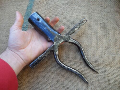 ANTIQUE WROUGHT IRON BEET EXTRACTING TOOL DIGGING BEETROOT