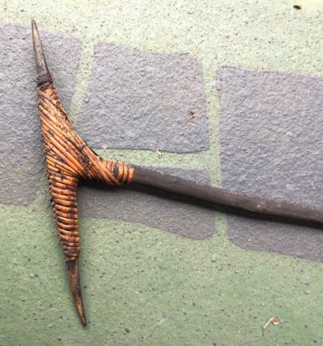 PNG Sepik River Fighting Pick 1970 Cassowary Claw