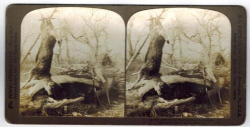 H.C. White Stereoview Card Stereoscopic Deer Hunting 6117 After The Hunt 1904