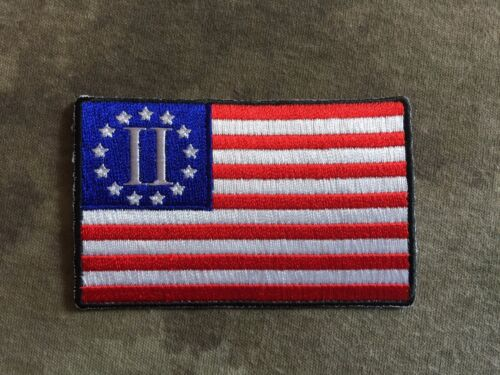 Second American Revolution Patriotic Flag PatchOther Militaria - 135