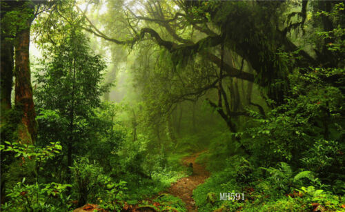 Vinyl Studio Forest Backdrop Photography Props Photo Background 5x3ft MH591