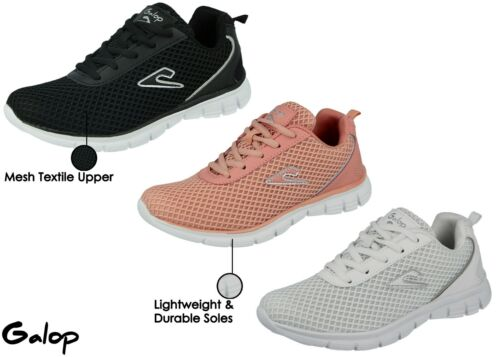Ladies Girls Galop Canvas Mesh Lace Up Lightweight Sport Gym Casual Trainers