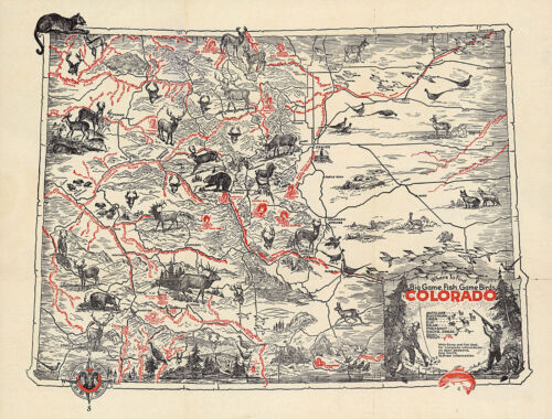Pictorial Map Where to find Big Game, Fish, Game Birds in Colorado Wall Poster