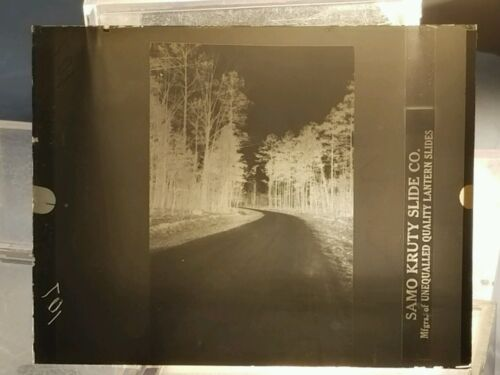Vintage GLASS NEGATIVE SLIDE Picture of Bending Road Through The Trees