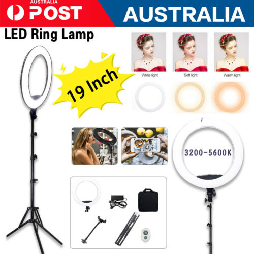 """19""""/10"""" LED Ring Light Dimmable Tripod Diffuser & Stand for Youtube Selfie Video"""