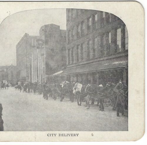 City Delivery Wagons/Horse Teams T. Eaton Co. Toronto, Canada ca 1905 Stereoview