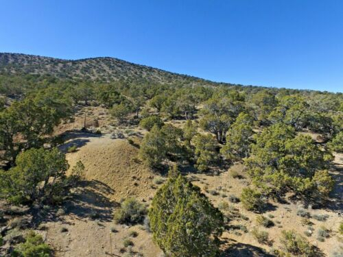 Nevada Gold Silver Mine Historic Pilot Mining Claim Adit Shaft Pit NV Au <br/> 2 Mines - High Gold + Silver initial XRF Reading - 2WD