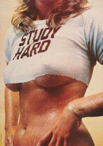 POSTER : STUDY HARD - SEXY FEMALE MODEL - FREE SHIPPING !     #X 01     LP45 N