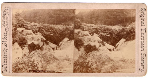 Antique STEREOVIEW MAN sitting ON THE HEIGHTS cliff Europe WEBSTER & ALBEE PHOTO