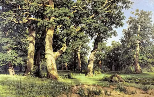 """Oil painting Ivan Shishkin - Eichen, Abend forest landscape with huge trees 36"""""""
