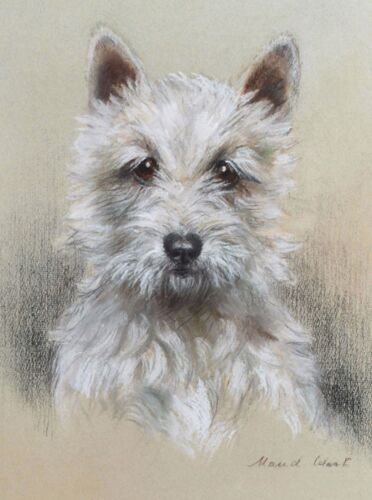 English Picture Print West Highland Terrier Dog Puppy Dogs Poster Vintage Art