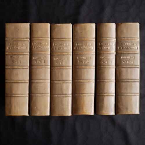 LONDON AND ITS ENVIRONS 6 Volume Set 1800's Collectible