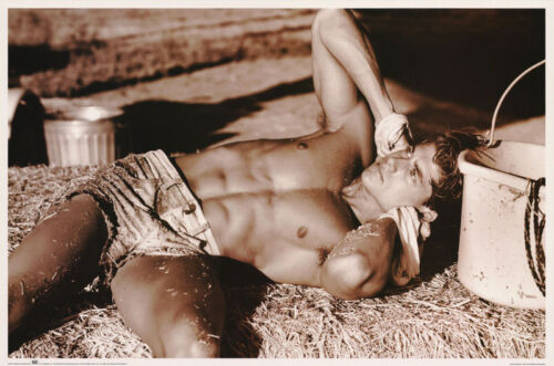 LOT OF 2 POSTERS: MAN LAYING IN THE HAY - SEXY MALE MODEL   #2499 LC6 E