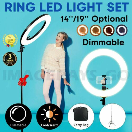 """19"""" 14""""  5500K Dimmable Diva LED Ring Light with Diffuser Stand Make Up Studio"""