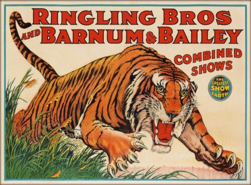 Ringling Brothers Tiger Show Vintage Circus Travel Advertisement Poster