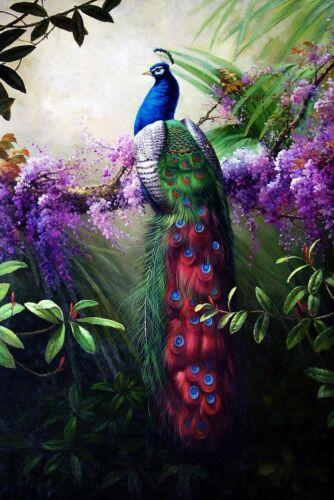 LMOP255 wall decor art charm 100% hand-painted peacock OIL PAINTING on CANVAS