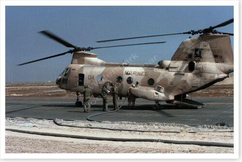 USMC Marine Corps CH-46E Sea Knight Helicopter Desert Storm 8 x 12 PhotoReproductions - 156449