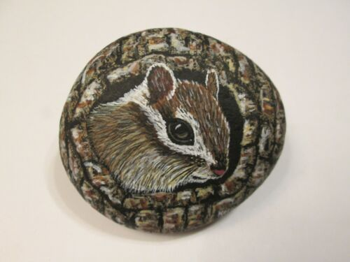 Chipmunk hand painted on a rock by Ann Kelly