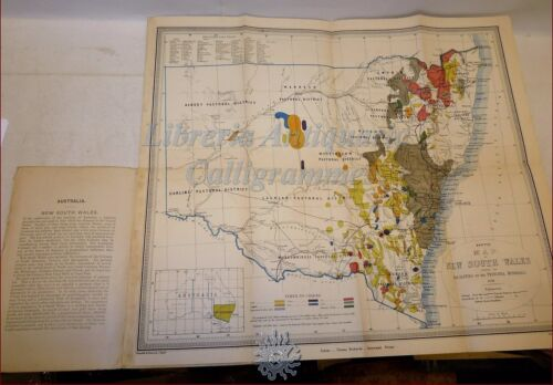 AUSTRALIA MAPPA A COLORI 1876 New South Wales Mineral Map SYDNEY University