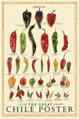The Great Chile Poster Fresh Mark Miller Kitchen Fresco Pepper Food Print 24x36