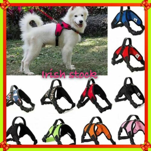 Dog Harness Pet Vest Collar No Pull Lead Walking Training Chest Nylon Strap S-XL