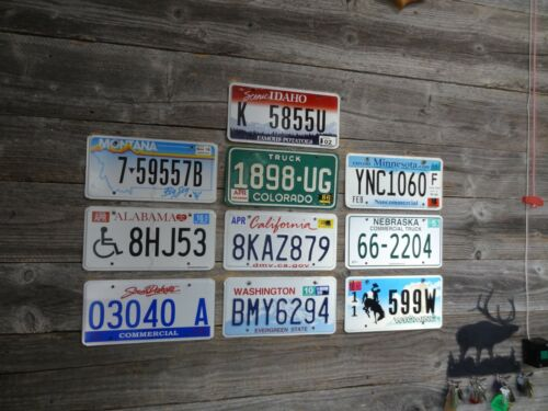 10 License Plates from different states Mixed lot of license plates bulk sale!!!