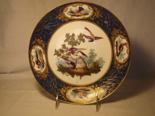 18thc Louis XV Sevres Hard Paste Porcelain Exotic Birds Plate c1770
