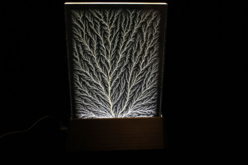 "4"" x 6"" x 1/2"" Captured Lightning Edge Lichtenberg Figure & Matching Light Base"