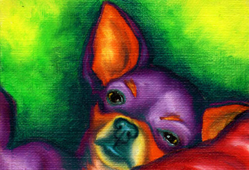 BIG 13x19 CHIHUAHUA Dog Colorful Signed Pop Art PRINT of Painting by VERN