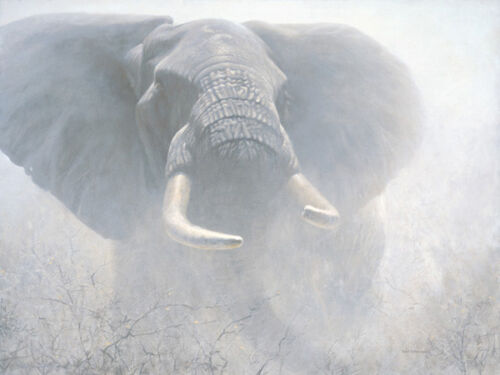 Robert BATEMAN Tembo Giclee Canvas art MINT African Elephant Signed & Numbered
