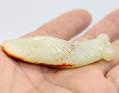 Collection hand-carved Chinese HeTian white jade cicada amulet pendant D596