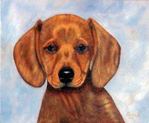 "Animal-Dog  ""DACHSHUND PORTRAIT""'  Orig. oil painting =Orphie Barella 12X16"