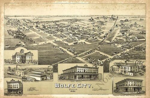 Panoramic map of Wolfe City TX c1891 repro 20x16