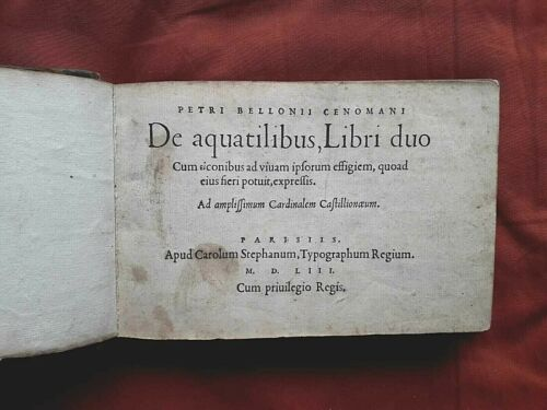 Belon Pierre - De aquatilibus Libri duo.... 1553