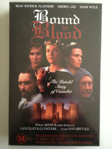 BOUND IN BLOOD ~ SEAN PATRICK FLANNERY~ SHERYL LEE ~ NOAH WYLE ~ RARE VHS VIDEO