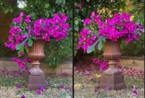 A pair of vintage cast iron urns on stands