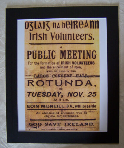 Irish Republican Army Meeting Rotunda poster  PHOTOGRAPH
