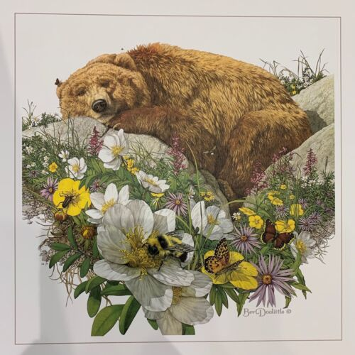 """Bev DOOLITTLE """" Bugged Bear """" WSS rare art print with write up Grizzly Banff"""