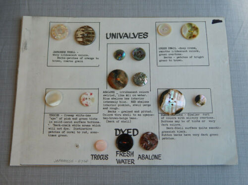 Lot of Antique Vtg Buttons Mother of Pearl Abalon Others~#631-F