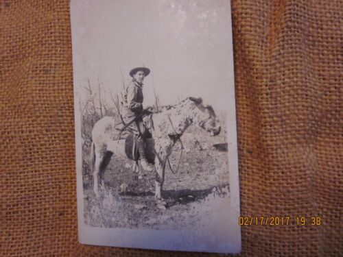 Postcard of Cowboy Riding on a Mule