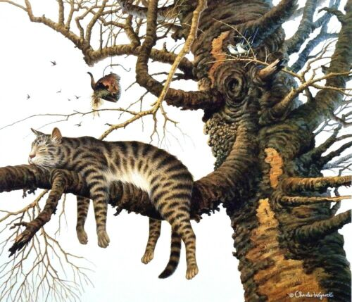 """Charles Wysocki Too Pooped to Participate Cat in a Tree Print 20"""" x 17.25"""""""
