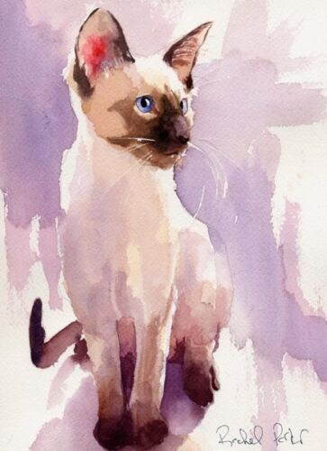 Giclee Print Siamese Cat Art Watercolor Painting  Chocolate Seal Point portrait