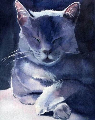 Giclee PRINT Russian Blue Grey Gray Cat Art Painting  Gift Custom watercolor