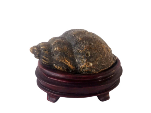 Antique Chinese Solid Bronze Conch Shell Sculpture w/  Base