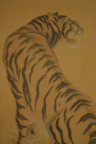 Hanging Scroll Japanese Painting Tiger Japan Asian Art Pic ink old Picture u56