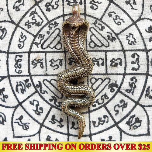 Brass King Cobra Snake Hunting Money Powerful Amulet Pendant Talismans Wealth FS