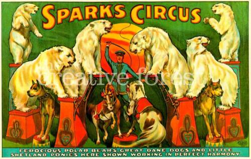 SPARKS CIRCUS Vintage Circus Poster CANVAS ART PRINT 36x24 in.