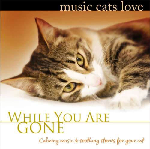 Cats 101: MUSIC FOR CATS to Calm, Relax, & Cure Separation Anxiety Cat Music NEW