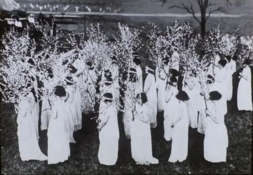 A Peach Tree Carnival in Georgia, 1929 or Earlier, Magic Lantern Glass Slide