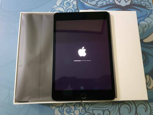 iPad Mini 5 Cell. 256GB w/ Smart Cover and Apple Pencil